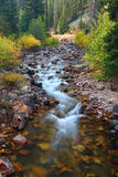 Pristine Montana Stream. Clear stream flowing through the Lewis and Clark National Forest of Montana Stock Image