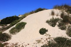Pristine sand dunes, Peniche, Leiria district near Lisbon, Portugal. royalty free stock photography