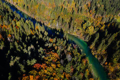 Pristine river meandering through forested landscape Royalty Free Stock Photo