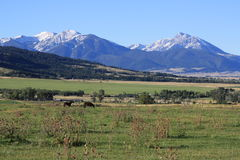 Pristine Rocky Mountain Peaks Stock Images