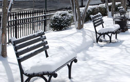 Pristine snow-covered benches Stock Photography