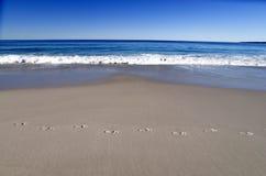 pristine strand arkivfoto