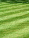 A pristine striped grass lawn. A pristine and accurately-mowed striped grass lawn Stock Images