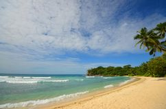 Pristine tropic beach Stock Photography