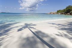 Pristine tropical beach. Grand Anse beach, palm shadow, La Digue island, Seychelles stock photography