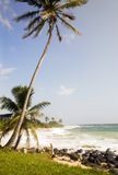 Pristine undeveloped beach corn island nicaragua Royalty Free Stock Images