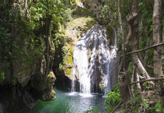 Pristine or untouched Cuban nature in consevation park. The pristine or untouched Cuban nature, a waterfall in a clear water river in the Escambray mountains royalty free stock images