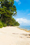 Pristine Untouched White Sand Beach Paradise. A beautiful stretch of untouched white coral sand beach butts up against the ocean and forest edge on Neil Island royalty free stock image