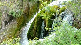 Pristine Waterfall. Clean mossy waterfall in the spring royalty free stock images