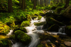 Pristine waterfalls deep in the woods Royalty Free Stock Photos