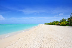 Pristine white sand beach Royalty Free Stock Photo