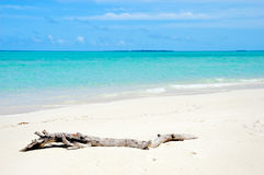 Pristine white sand beach Stock Images