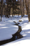 Pristine Winter Creek. Winter creek with untouched snow surrounding it Stock Image