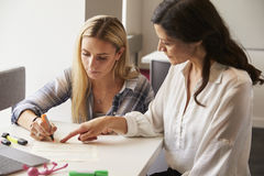 Privé-leraar Using Learning Aids om Student With Dyslexia te helpen stock afbeeldingen