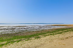 Privé strand met Puget Sound-mening, Burien, WA Stock Foto's