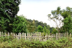 Privacy Bamboo Fence Panel Stock Photography