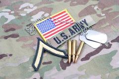 Privat frodig lapp för USA-ARMÉ, flaggalapp, med hundetiketten och 5 56 mmrundor på likformign Royaltyfri Fotografi