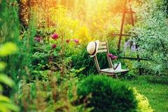 privat trädgård för härlig blommande sommar med trästol royaltyfri fotografi