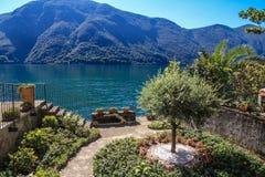 Privat trädgård i Lugano sjön Arkivbild