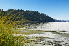 Private beach with Puget Sound view, Burien, WA. Scenic private beach with Puget Sound view and green hill, Burien, WA royalty free stock images