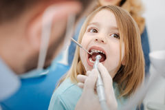 Private experienced dentist running some procedures Stock Images