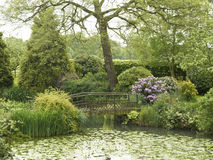 Private garden. With pond and unsafe bridge in Cheshire UK Royalty Free Stock Image