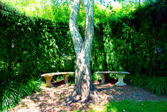 A private garden seat. A secluded seated area in a private garden Stock Photos