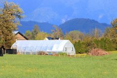 Private Greenhouse for Horticultural Uses. A large, private greenhouse comprised of wire framing and plastic sheeting, is used a variety of all season royalty free stock photography