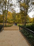 Private intimate wedding on a golden autumn day in Berlin. Bride and groom with their photographer walking along the path in a popular city Tiergarten park on a stock image