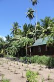 Private island beach stock photos