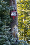 Private Property Signs in Snowy Forest. Private property warning signs in the pines of a snowy forest road royalty free stock photography