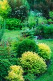 private summer cottage garden view with mixed border. royalty free stock image