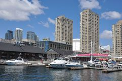 Private vessels docked in Toronto harbourfront. Signaling the start of cruising season Royalty Free Stock Photography