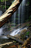 Private Waterfall Stock Photography