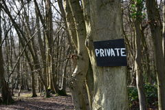 Private woodland Stock Photography