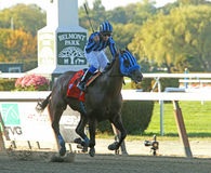 Private Zone Wins The Vosburgh Stakes Stock Photo