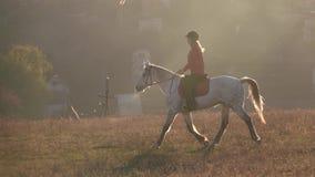 Privatwirtschaft mit Häusern und Reiter, der ein Pferd reitet Langsame Bewegung stock video footage