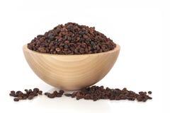 Privet Fruit Herbal Medicine Royalty Free Stock Image