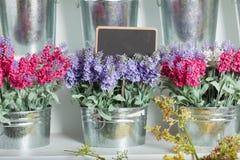 Prix à payer de fleuristes Photographie stock libre de droits