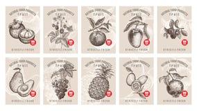 Prix à payer pour des baies et des fruits illustration de vecteur