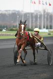 Prix d'Amérique, Vincennes, 2007 Royalty Free Stock Photo