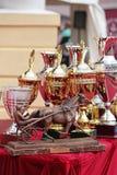 Prix de l'élevage de cheval de trotteur d'Orlovsky Photo libre de droits