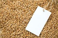 Prix de texture et d'étiquette de blé Photographie stock