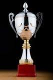 Prize Cup gegen den Hintergrund Lizenzfreies Stockfoto