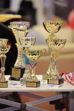 Prize cups Royalty Free Stock Photos