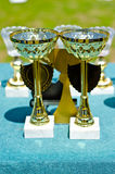 Prize cups Stock Images