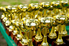 Prize cups Royalty Free Stock Images