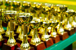 Prize cups. A lot of prize cups outdoors stock photography