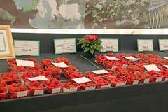 Prize Erdbeeren Lizenzfreie Stockfotografie