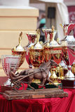 Prize of the Orlovsky Trotter horse breeding Royalty Free Stock Photo